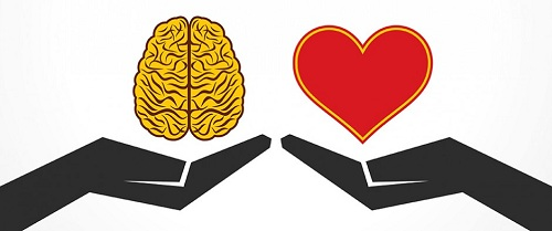 افراد احساسی,افراد چپ مغز,افراد راست مغز