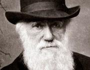 بیوگرافی چارلز داروین,چارلز داروین,زندگی دانشمندان
