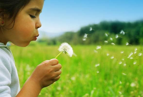 آرزو داشتن,راز رسیدن به آرزوها,راه رسیدن به آرزوها