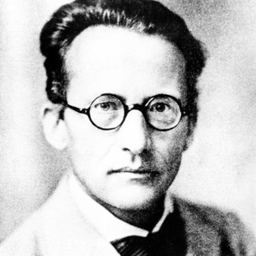 آروین شرودینگر,اروین شرودینگر حیات چیست,اروین شرودینگر کیست