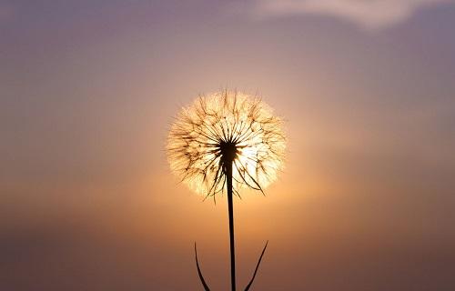 آفرینش زندگی,اساتید موفقیت,افکار مثبت
