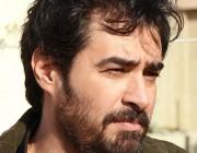 بیوگرافی شهاب حسینی بازیگر,زندگینامه سید شهاب الدین حسینی,زندگینامه سید شهاب حسینی