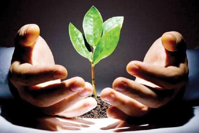 توسعه مهارتهای فردی چیست,عوامل توسعه فردی,کار و موفقیت