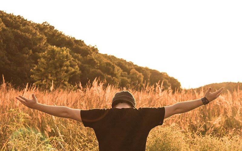 تحولی در زندگی,روز اول شکرگزاری,شغل موفقیت