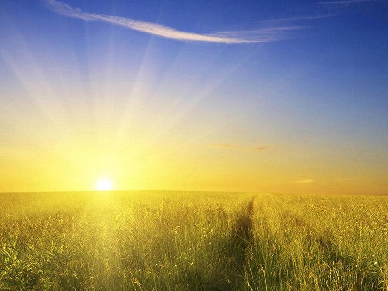 روز یازدهم شکرگزاری,روز یازدهم معجره شکرگزاری,قانون جذب دو