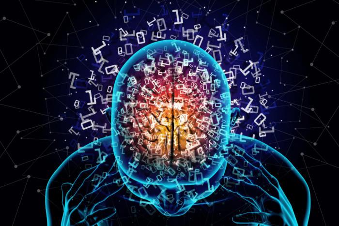 مغز دو حالت عملکرد دارد