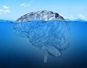 شناخت ضمير ناخودآگاه,شناخت ضمیر ناخودآگاه,ضمیر خودآگاه و ضمیر ناخودآگاه