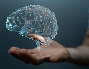 الگوهای رفتاری,موفقیت در زندگی,نیروهای مغز