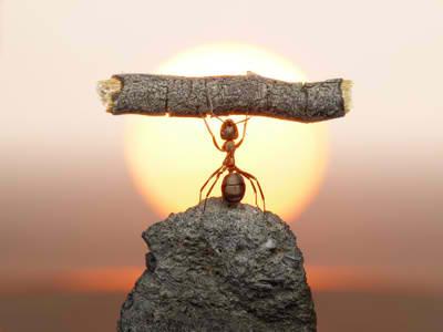اعتماد به نفس,پرورش افکار,تغییر در خودمان