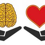 تفاوت مغز افراد منطقی و احساساتی