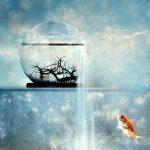 چند عادت قدرتمند برای تغییر در زندگی