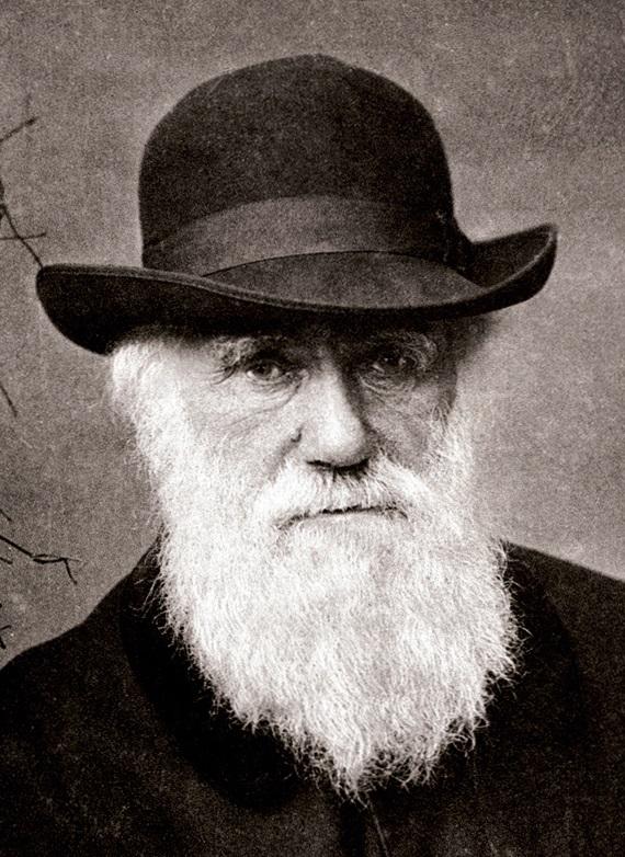 زندگی نامه ی چارلز داروین,زندگینامه چارلز داروین,سخنان چارلز داروین