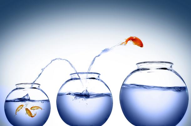 آرزوی موفقیت بیشتر,ارزوی موفقیت در سال جدید,برای موفقیت بیشتر