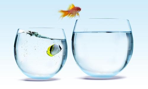 ترس های ناشناخته,تغییر در زندگی,راه زندگی