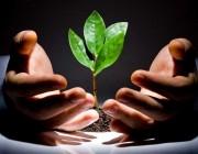 بهترین رهبران دنیا,چشم انداز در کارآفرینی,چشم انداز کارآفرینی