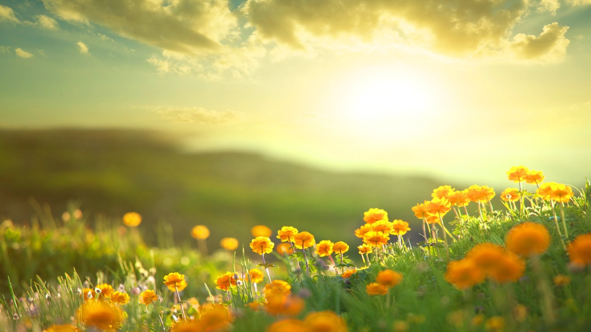 قدرشناس باشیم,مسیر زندگی,معجزه زندگی
