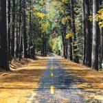 رازهای مهم جهت دادن به زندگی – باورها و ارزش ها