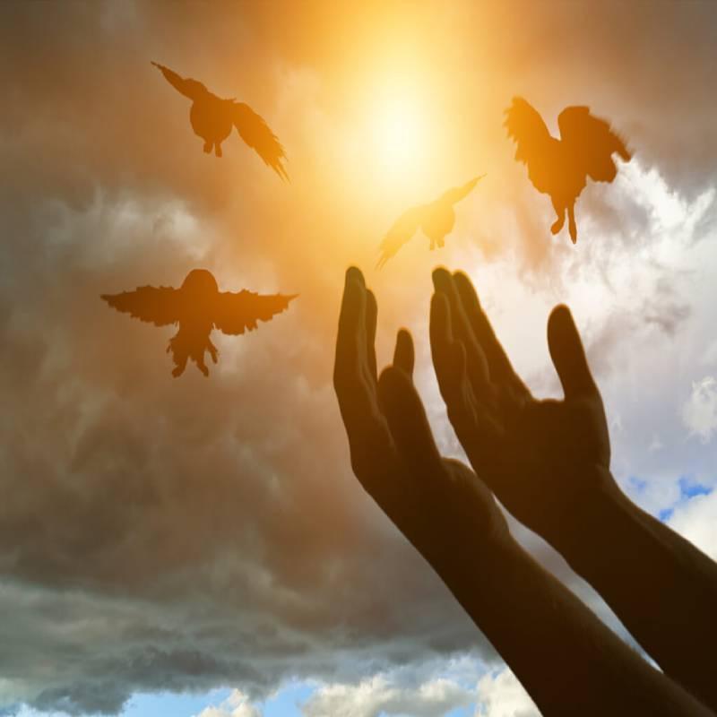 بخشش واقعی چیست | چرا باید به بخشش اهمیت دهیم